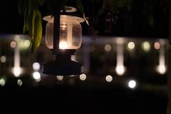 """Progetto Notturno, per imparare a vivere """"al buio"""""""
