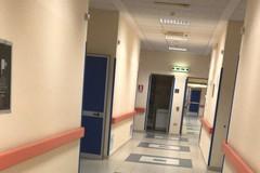 D'Ambrosio tira dentro Emiliano sulla vicenda del topo nell'ospedale di Bisceglie
