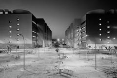 Paura e periferie: tornare a pensare la città in città