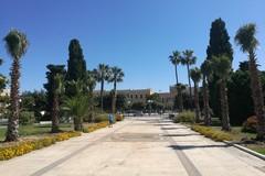 Cento alberi donati al Comune da un ex Colonnello dei Carabinieri