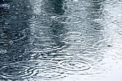 Maltempo e vento, allerta meteo arancione su Bisceglie