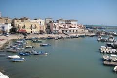 La cultura portuale