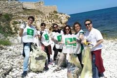 Volontari ripuliscono la spiaggia del Ponte Lama