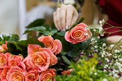 Rinnovato il contratto di lavoro provinciale di operai agricoli e florovivaisti