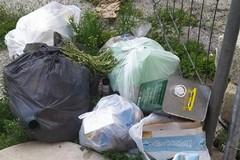 «Immondizia tra via Abate Bruni e via Terlizzi»