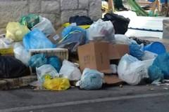 Spina all'attacco: «Spero non sia vera la voce di una procedura negoziata ristretta per la gestione del servizio di igiene urbana»