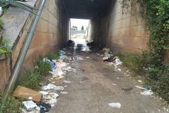 Bisceglie ammessa ai contributi regionaliper la pulizia delle strade extraurbane