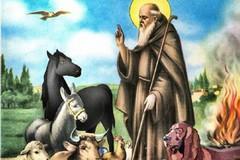 Domenica la ricorrenza di Sant'Antonio Abate