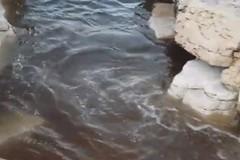 Sversamento acque reflue, Angarano: «Danno ambientale e d'immagine per la città»