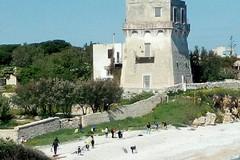 """Mercoledì 19 giugno pulizia della spiaggia """"La torretta"""""""