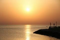Numero verde attivo per la protezione delle coste pugliesi
