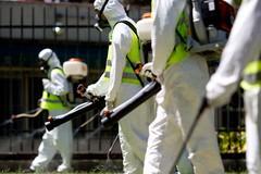 Il vicesindaco Consiglio annuncia un calendario di derattizzazioni e disinfestazioni