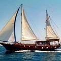 """""""Macboat """", al via la seconda edizione del festival di Bisceglie Approdi"""