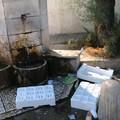 Ruggieri denuncia la grave situazione di incuria delle fontane pubbliche
