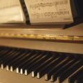 Il giovane pianista biscegliese Mattia Campagnola per la prima volta in concerto a Bisceglie