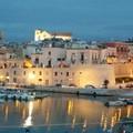 «Altro che crollo, i dati ufficiali sul turismo a Bisceglie evidenziano le strumentalizzazioni politiche»