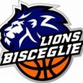 Nuovo logo per i Lions