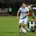 Playoff Serie C, avanzano Potenza, Virtus Francavilla e Reggina