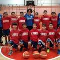 """I Lions protagonisti del torneo internazionale """"Minibasket in piazza"""""""