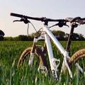 Biciliæ organizza una ciclopasseggiata primaverile