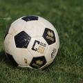 Serie C: il Bari si ferma a Terni, la Reggina scappa