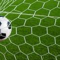 """Le squadre giovanili del Bisceglie al torneo  """"Trani perla dell'Adriatico """""""