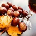 Castagne, Vino & Brasciole