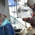 Fermo pesca, Coldiretti Puglia: «Estero l'80% del prodotto sulle nostre tavole»