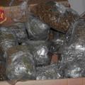 Biscegliese arrestato dalla Polizia per detenzione di droga a fini di spaccio
