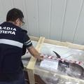 La Guardia Costiera sequestra nove tonnellate di prodotti ittici in cattivo stato di conservazione