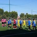 Fùtbol Cinco Bisceglie in campo nel turno infrasettimanale