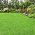 Un bonus verde per giardini e aree esterne condominiali