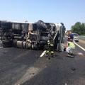 Incidente sull'A14 nei pressi di Bisceglie: otto feriti