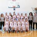 Basket, il biscegliese Giovanni Misino nello staff tecnico delle rappresentative pugliesi al Torneo delle regioni