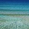 Goletta verde: «Le acque biscegliesi rispettano i limiti di legge»