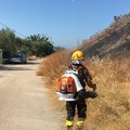 Principio d'incendio su una complanare della statale 16 bis