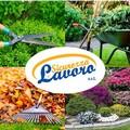 Lavoro e Sicurezza Srl, manutenzione professionale e cura di aree verdi e giardini pubblici e privati