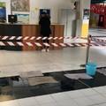 """Sopralluogo di Laura Di Pilato al  """"Dell'Olio """": «La situazione è tragica»"""