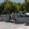 """La scuola media  """"Riccardo Monterisi """" festeggia la Giornata degli alberi"""