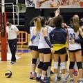 Sportilia non concede sconti, 3-0 sul campo della Dinamo Molfetta