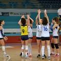 Sportilia a Cerignola per chiudere il discorso playoff