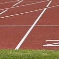 Nel weekend le finali nazionali dei campionati di società, i biscegliesi in gara