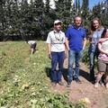 Tutti nell'orto a raccogliere i frutti di GrInLab: si è conclusa la fruttuosa esperienza del primo orto urbano allestito in una scuola