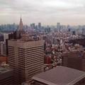 Cartoline dal Giappone, prima puntata: da Bisceglie a Tokyo