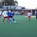 Il Fùtbol Cinco Bisceglie organizza uno stage per la prima squadra