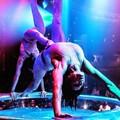 Live show e spettacoli itineranti, l'84esima Campionaria accoglierà i visitatori con spettacolari esibizioni