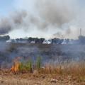 Zona industriale Lama di Macina: a fuoco ettari ed ettari di campagna