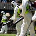 Disinfestazione contro mosche e zanzare