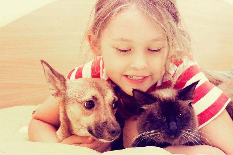 Bimba con cane e gatto