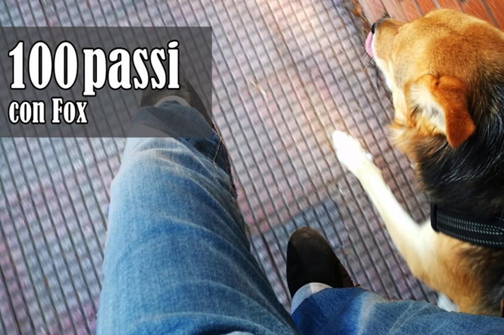 cento passi con Fox. <span>Foto Serena Ferrara</span>